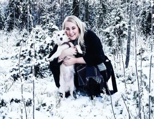 Merry Christmas from my winter wonderland! @leiathestray says woof! ✨ #merrychristmas #godjul