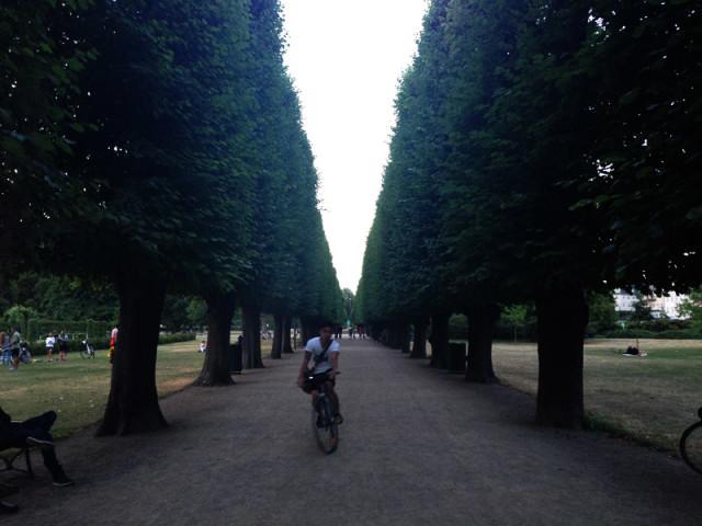 Rosenborg Slottsträdgård
